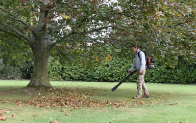 General grounds maintenance