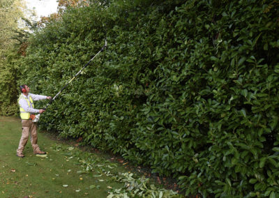landscaping-somerset-south-west29